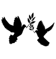 doves olive vector image vector image