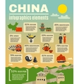 Infographic Presentation Poster On Chinese vector image