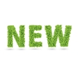 New text of green leaves vector image vector image