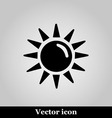 Sun flat icon on grey background vector image