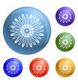 top view chamomile icons set vector image