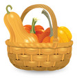 wicker basket full pumpkins isolated on white vector image