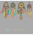 Beautiful with dream catchers vector image vector image