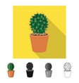 isolated object of cactus and pot sign collection vector image vector image