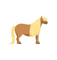 shetland pony thoroughbred horse vector image