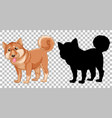 shiba inu dog and its silhouette vector image vector image