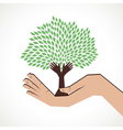 hand tree in hand stock vector image