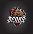bear head logo mascot emblem on shield vector image vector image