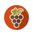 grapes flat icon fruit vector image vector image