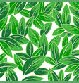 leaf nature scene vector image vector image