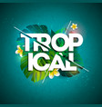 tropical holiday typographic vector image vector image