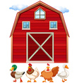 Barn and farm animals vector image vector image