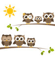 brown owls and owlets on the tree vector image vector image