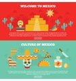 Mexican Banners Set vector image