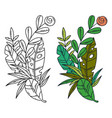 separated of tropical leaves and vector image