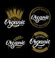 set organic hand written lettering logos labels vector image vector image