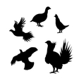 silhouettes of a grouse vector image vector image