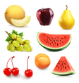 Summer fruits set of icon vector image