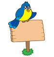wooden sign with sitting bird vector image vector image