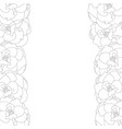 begonia flower picotee outline border vector image