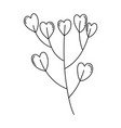 branch with hearts love vector image