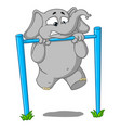 elephantpullups on the bar its hard for him vector image vector image