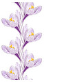 flower of saffron vector image vector image