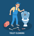 toilet cleaning plumbing service vector image