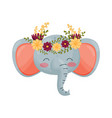 elephant head with flower wreath flora and fauna vector image