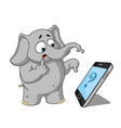 elephantsomeone called surprised cartoon vector image vector image