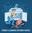 fixing leaking kitchen faucet vector image