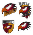 Professional sports logo hawks vector image vector image