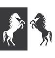 Rearing up horse silhouette vector image