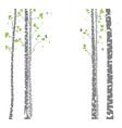 beautiful birch tree branch vector image vector image