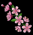 cherry blossom embroidery pattern vector image