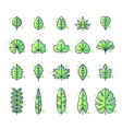 different types leaf icon set vector image