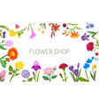 flowers shop floral frame poster with peopy lily vector image vector image