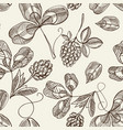 hop seamless pattern doodle vector image vector image