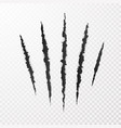 monster claws claw scratch mark animal scratch vector image vector image