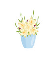 beautiful yellow lilies flowers in blue wide vase vector image vector image