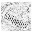 Comparing Online Retailers Word Cloud Concept vector image vector image