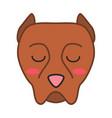 pit bull cute kawaii character vector image