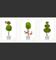 set of topiary cards vector image vector image