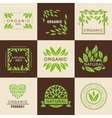Eco Organic Labels Set vector image vector image