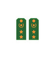 flat icon of green military shoulder straps vector image vector image