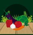 fresh vegetables cartoon vector image