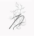 handwritten line drawing floral logo monogram d vector image vector image