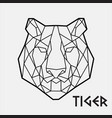 abstract polygonal geometric head a tiger vector image vector image