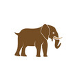elephant icon design template isolated vector image vector image