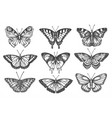 set isolated sketch butterfly or moth vector image vector image